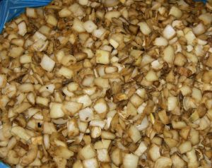 IQF GRILLED ONION