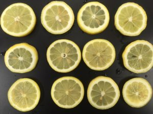 IQF LEMON SLICES