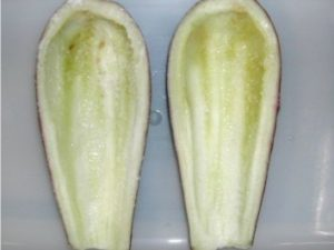 frozen blanched canoe aubergine