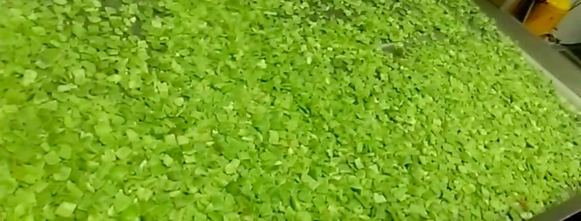 Pimiento Verde Cubos 20x20 IQF
