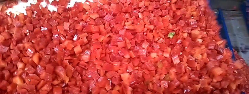 FROZEN RED PEPPER PRODUCTION