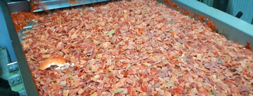 red pepper production before sorting