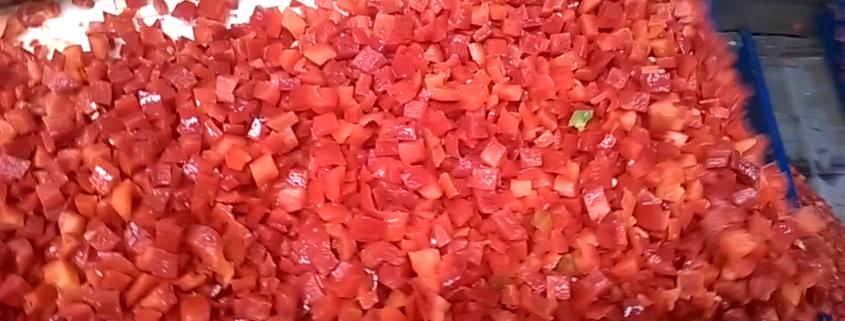 produccion pimiento rojo congelado